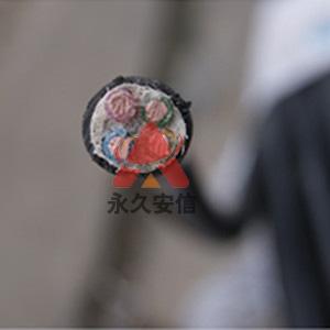 清明节期间,杭州安信照常为您服务