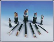 电线电缆专业生产厂家,杭州安信不容错过