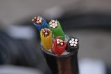 嵊州的客户来采购铜电缆喽,您还在犹豫什么呢【杭州安信】