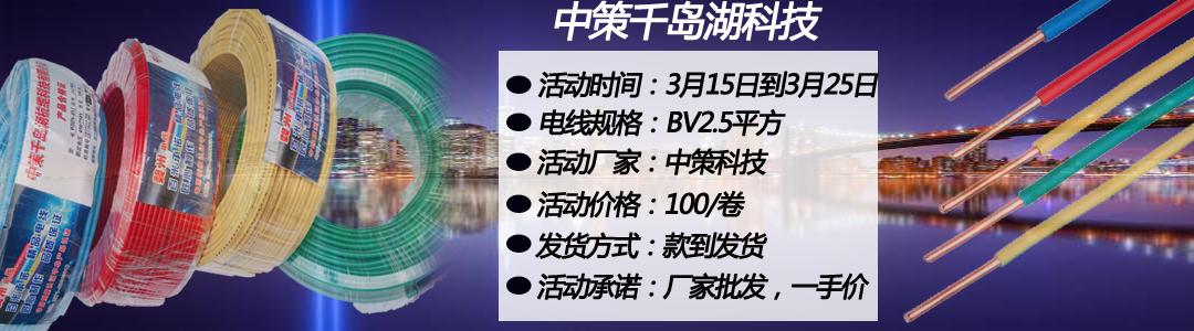 中策科技BV2.5电线