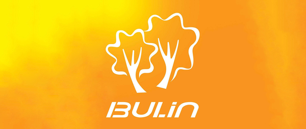 BULIN