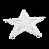五角星复合盘垫 -DF-T09