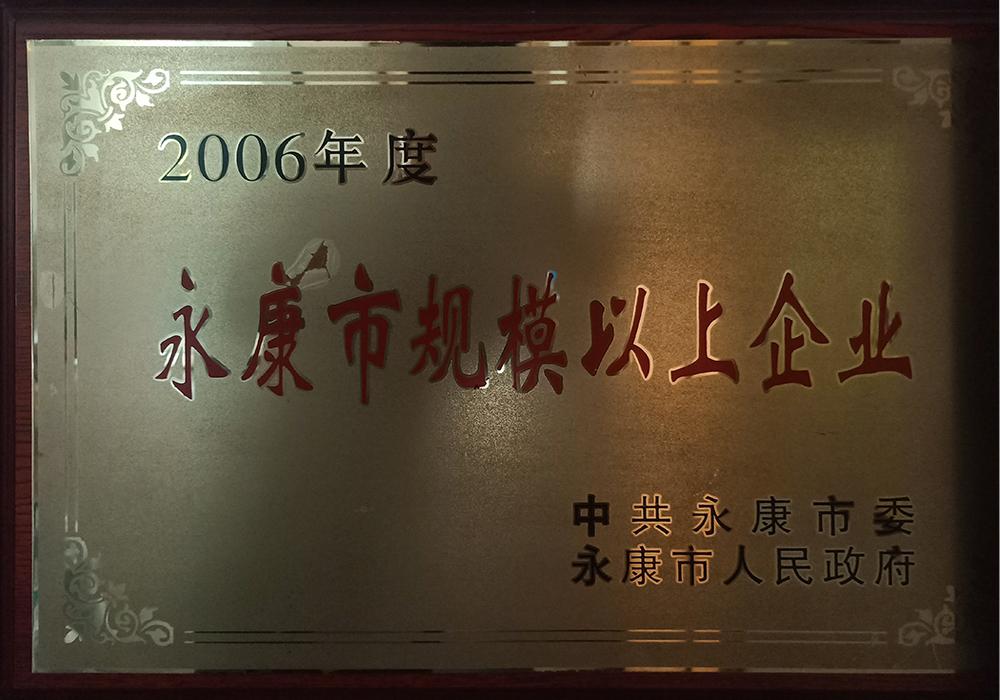 2006年度永康市規模以上企業