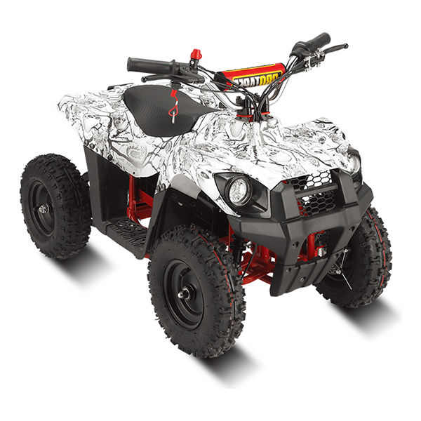 Electric ATV/MOTO