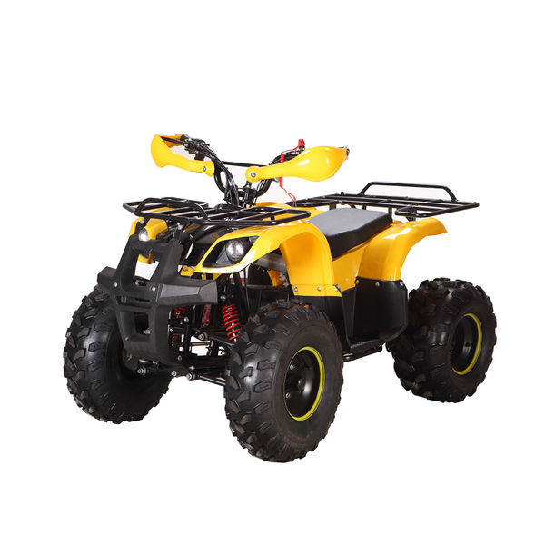 Electric ATV LME-1000G
