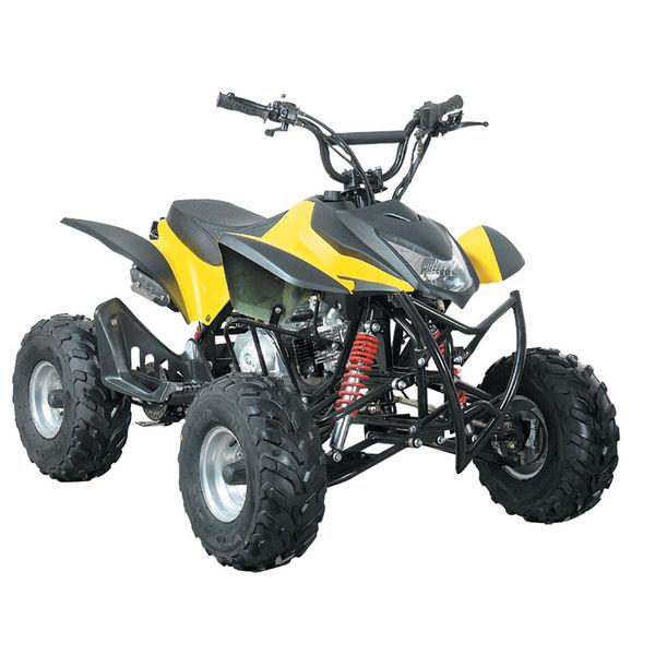 ATV QUAD LMATV-110F
