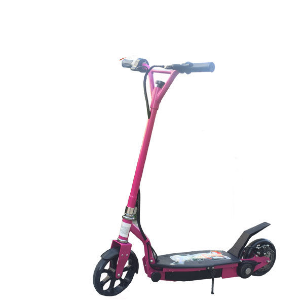 100W electric scooter LME-100
