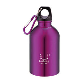 STAINLESS STEEL SPORTS BOTTLE-LS-S101