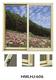 铝合金推拉窗-HMLHJ606