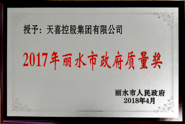 丽水市政府质量奖-奖牌