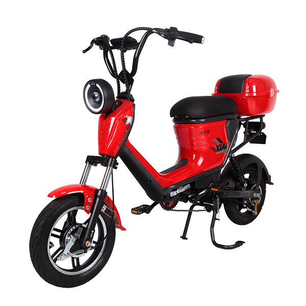 Electric Bike TDT0552Z