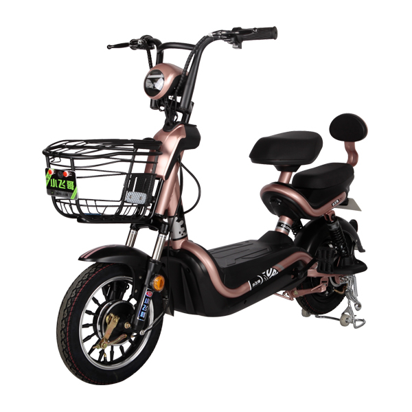Electric Bike TDT05Z
