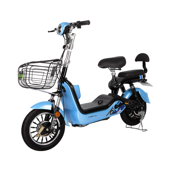 Electric Bike TDT07Z