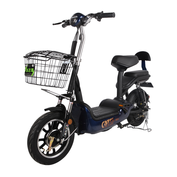 Electric Bike TDT0538Z