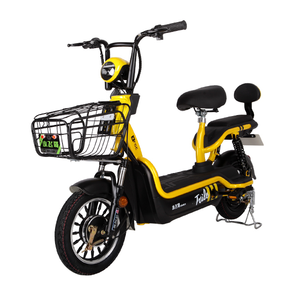 Electric Bike TDT03Z
