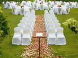 草坪婚礼椅套 -草地订婚仪式