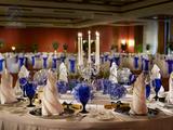 蓝色主题宴会厅 生日宴请 -QX-SW-XW002