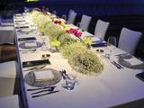 长方桌布西餐宴会布草 -长条桌布置