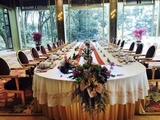 贡丝锦金黄桌裙配双面缎本白绣湖鸟五线谱长方圆头长条桌布欢迎晚宴桌布
