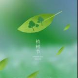 3.12植树节 │ 家居环保,群喜先行!