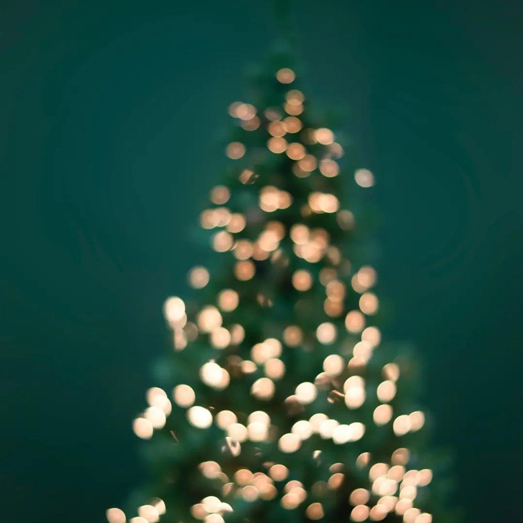 群喜木门 | MERRY CHRISTMAS