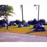 动物雕塑-32 -S-838