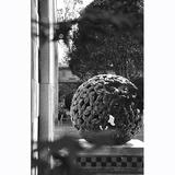植物雕塑-30 -S-926