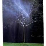 园林小品-166 -S-1108