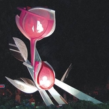 植物雕塑-1-S-294