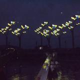 灯光雕塑-439