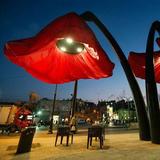灯光雕塑-64