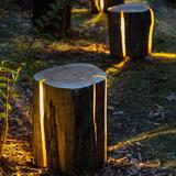 灯光雕塑-1-