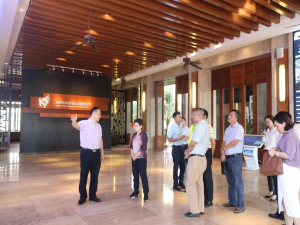 市政協走進三亞云港, 調研信息產業和園區企業發展情況