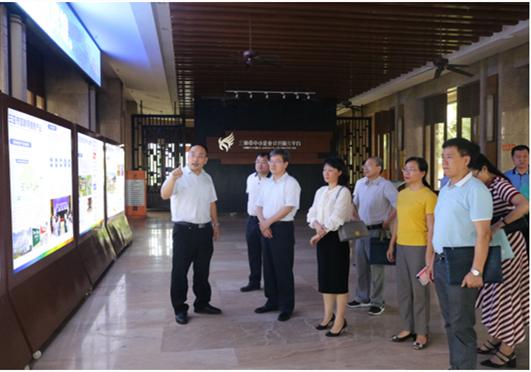 國家統計局調研組赴三亞信投公司開展調研工作