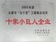 """2003年度永康市""""五十百""""工程重点培育十家小巨人企业"""