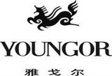 合作伙伴:雅戈尔集团