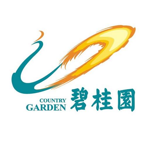 合作伙伴:碧桂圆集团