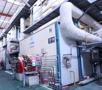 水煤浆导热油锅炉-