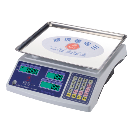 电子计价秤-6307-B-20P-电子计价秤
