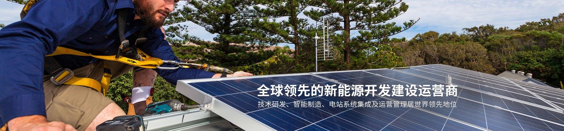 全球领先的新能源开发建设运营商