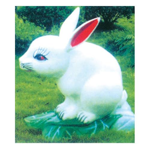 动物园系列 小白兔