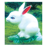 动物园系列 -小白兔