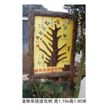 地理园系列 -植物系统进化树