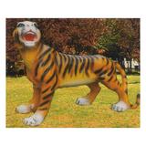 动物园系列 -老虎