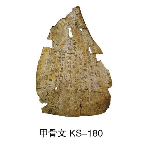 历史专用室教具 KS-180