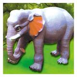 动物园系列 -大象