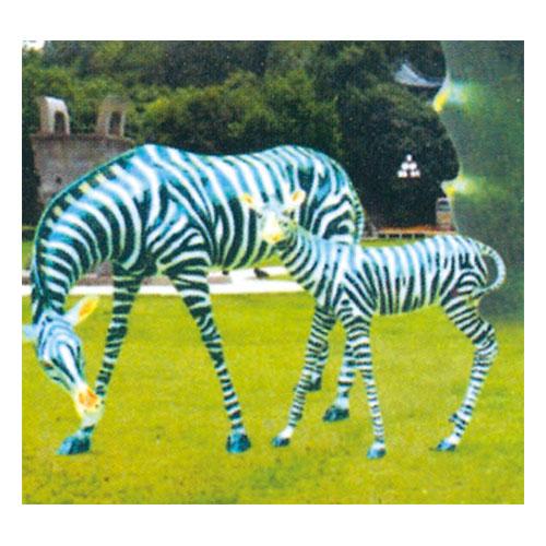 动物园系列 斑马