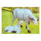 动物园系列 -牛