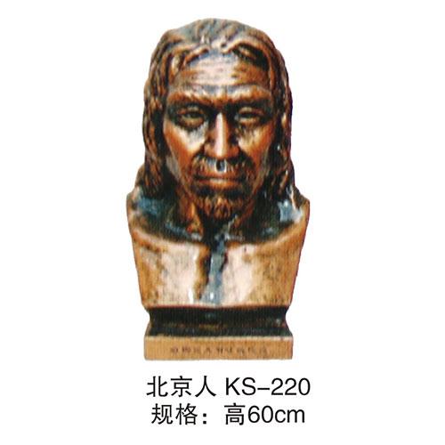 历史专用室教具 KS-220