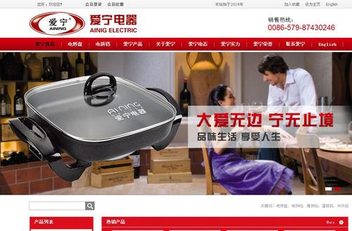 爱宁营销型网站案例展示-